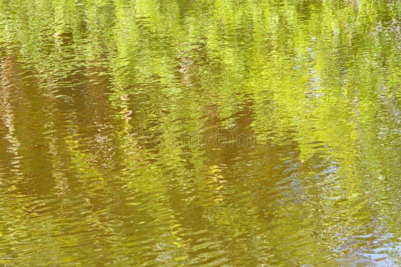Zielony Impresjonujący tło zdjęcie stock