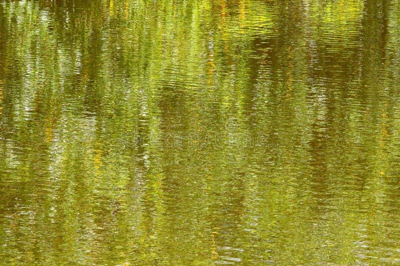 Zielony Impresjonujący tło fotografia royalty free