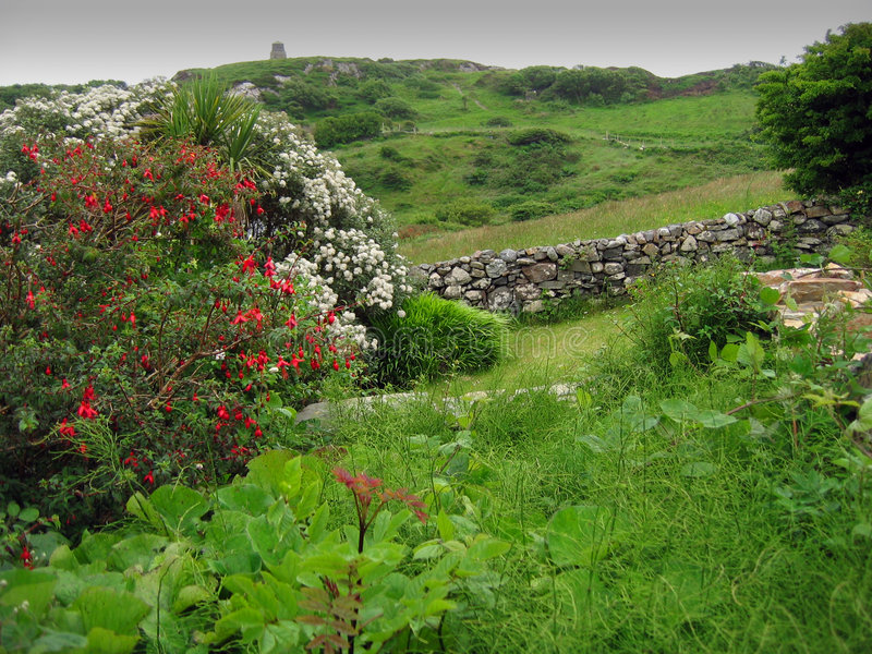 zielony Ireland obrazy royalty free