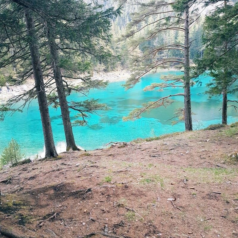 Zielony Jeziorny Austria obraz stock