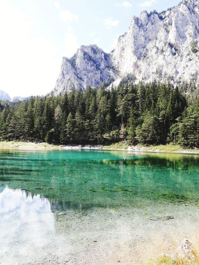 Zielony jezioro w Austria sorrounded drzewami i górami fotografia royalty free