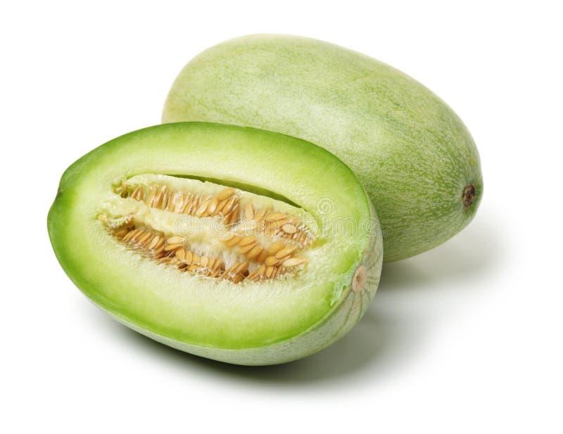 Zielony kantalupa melon zdjęcia royalty free