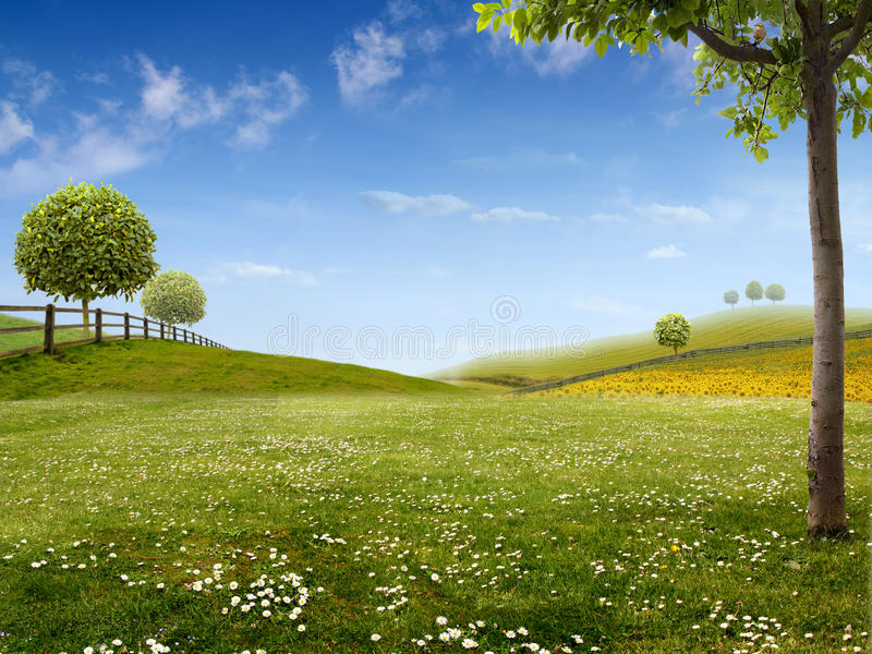 zielony krajobraz zdjęcie royalty free