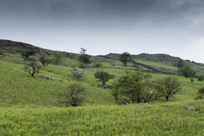 Zielony krajobraz w Jeziornym okręgu obrazy royalty free