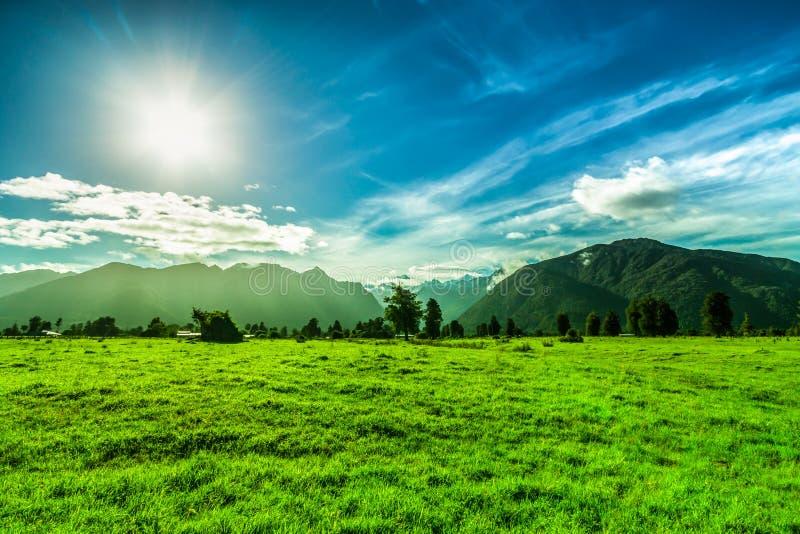 Zielony krajobraz w Nowa Zelandia zdjęcie royalty free