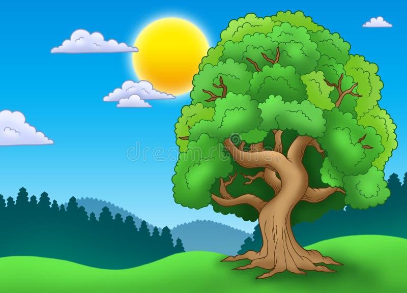 zielony krajobrazowy obfitolistny drzewo ilustracji