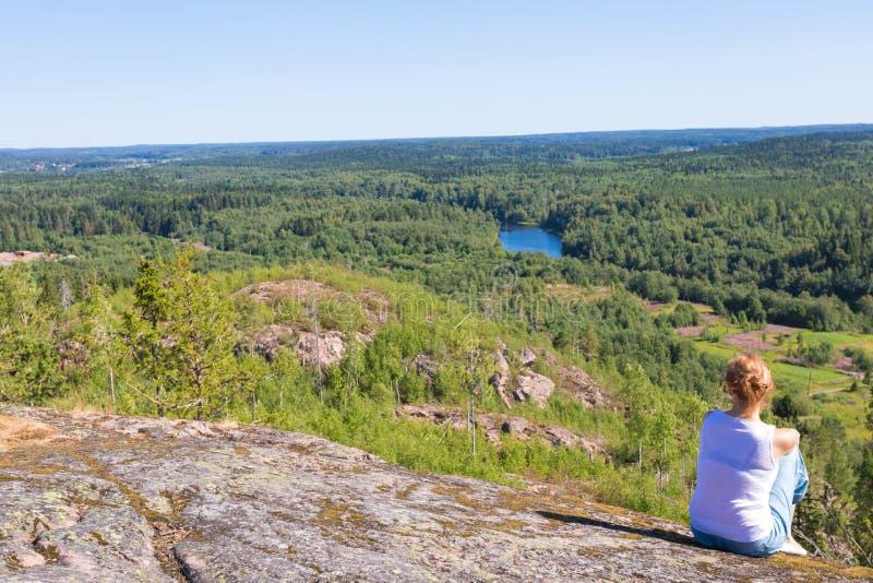 Zielony las jodła, świerczyna blisko brzeg Ladoga jezioro w Rosja sosny zdjęcie royalty free