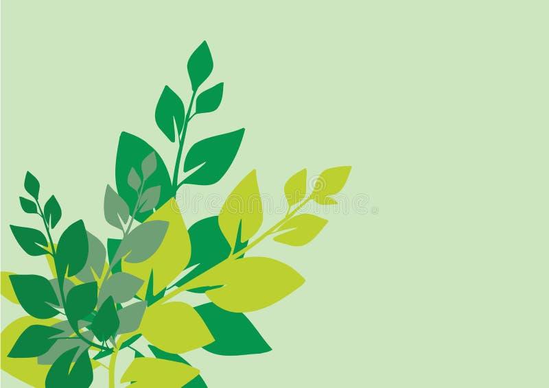 zielony leafs wektora ilustracja wektor