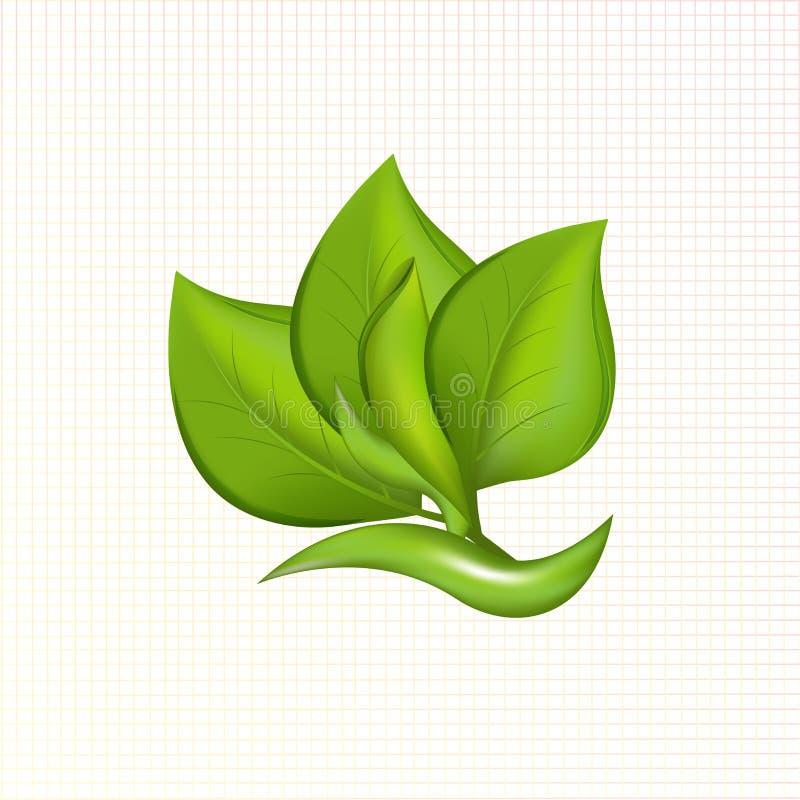 Zielony liść rośliny ikony loga wektoru wizerunek ilustracji