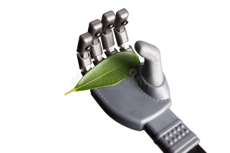 Zielony liść w mechanicznej ręce odizolowywającej na bielu zdjęcie royalty free