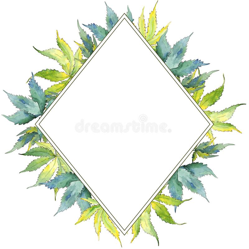 Zielony marihuana liść Liść rośliny ogródu botanicznego kwiecisty ulistnienie Ramowy rabatowy ornamentu kwadrat royalty ilustracja