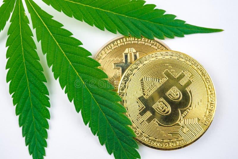 Zielony marihuana li?? i bitcoin moneta obrazy royalty free