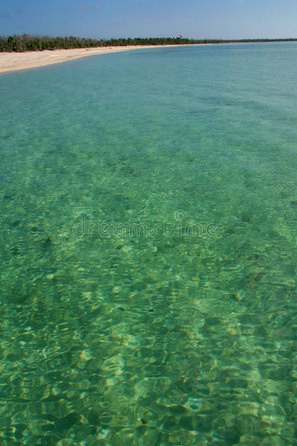 zielony morza fotografia stock