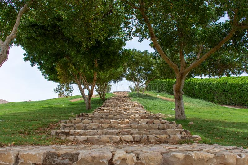 Zielony Mubazzarah parka ślad lub ścieżka w górę wzgórza w Al Ain, Zjednoczone Emiraty Arabskie zdjęcie stock