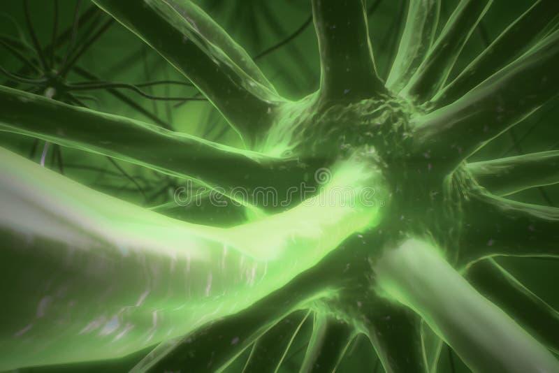 Zielony neuronu zbliżenie royalty ilustracja