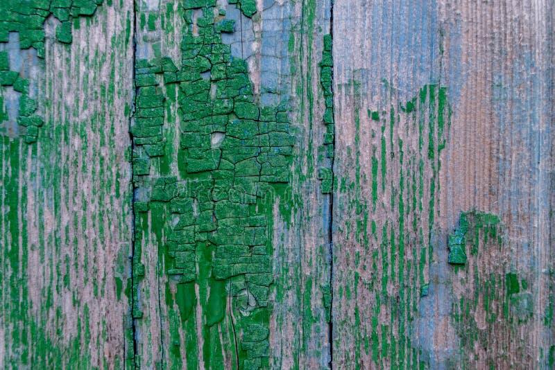 Zielony odcień na drewnie z innymi cieniami kolor zmienia czasem obrazy royalty free