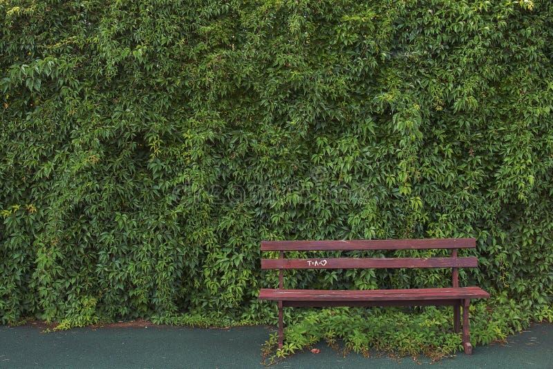 Zielony ogrodzenie z ławką zdjęcie royalty free