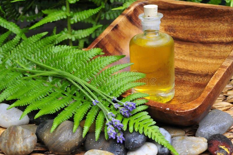 zielony olej zasadza wellness zdjęcia stock