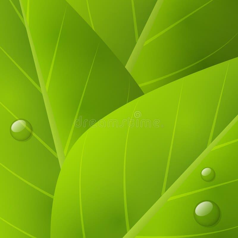 Zielony organicznie tło royalty ilustracja