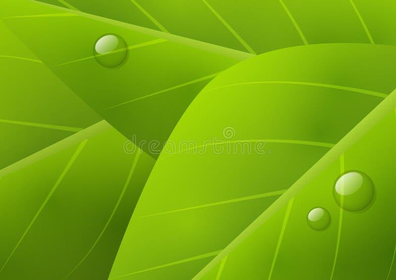 Zielony organicznie tło ilustracja wektor