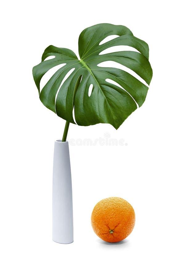 Zielony palmowy liść w białej wazie z pomarańcze obraz stock