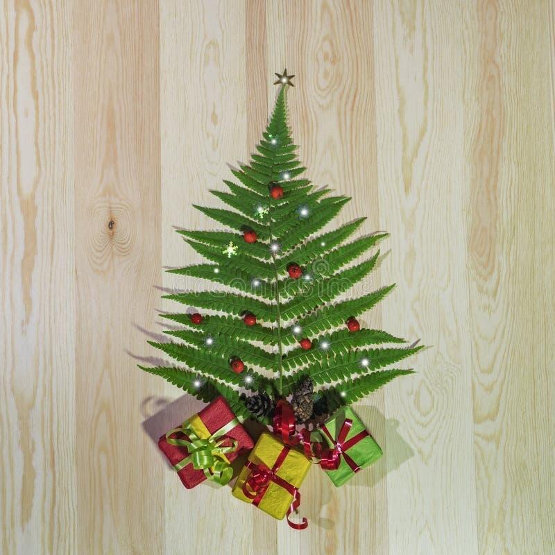 Zielony paprociowy liść jak choinka z prezentami, zdjęcie stock