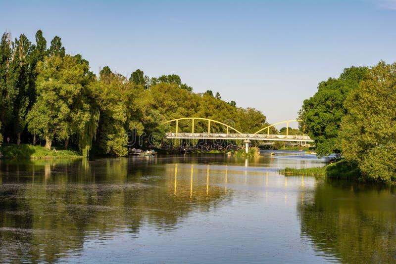 Zielony park z drzewami i rzeką Pogodny wakacje fotografia stock