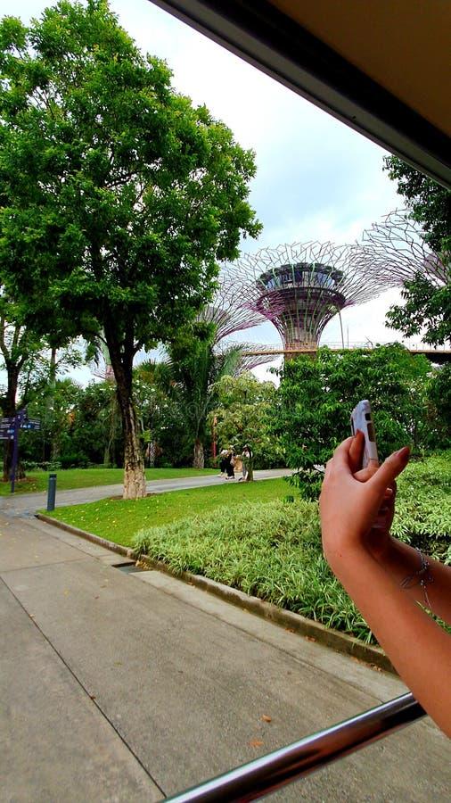Zielony parkowy dzień z chmurnym niebem obrazy royalty free