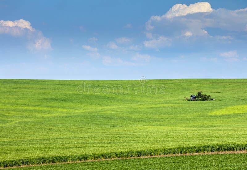 Zielony pola i gospodarstwa rolnego dom pod niebieskim niebem obraz stock