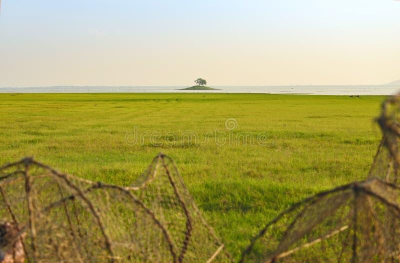 zielony pole i mała wyspa środka rzeka obrazy stock