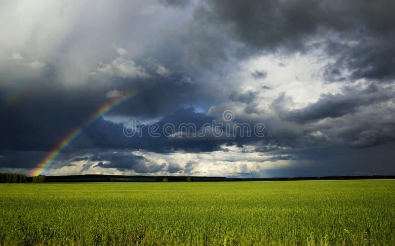 Zielony pole i tęcza pod pięknym niebem na sposobie od Karaganda Astana, Kazachstan zdjęcia royalty free