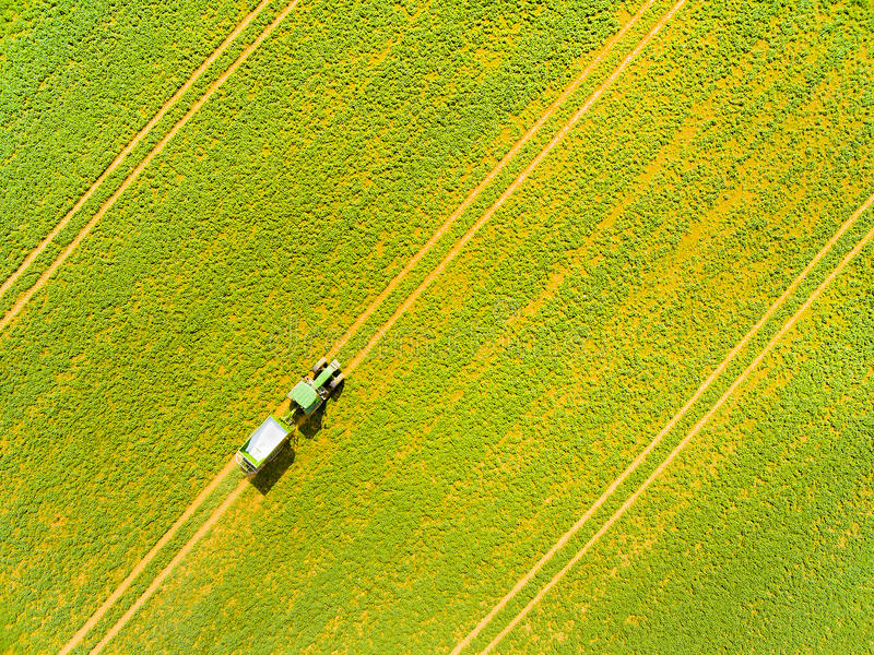 Zielony pole z ciągnikiem zdjęcie stock
