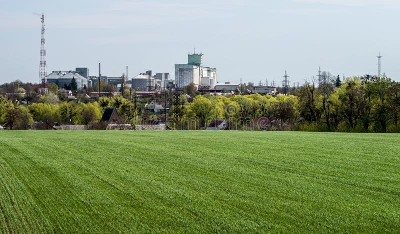 Zielony pole z potomstwami kiełkuje przed panoramą przemysłowy kompleks obrazy royalty free