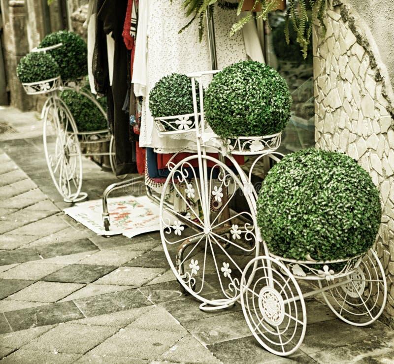 Zielony przygotowania przy kwiatu sklepem, Naples, Włochy obrazy stock
