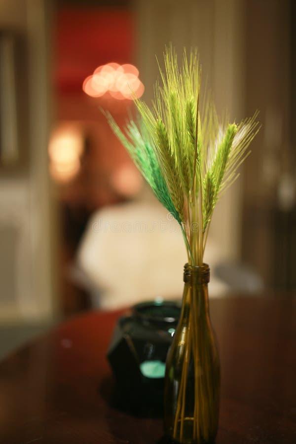 Zielony pszeniczny zarazek w wazie troszkę zdjęcie stock