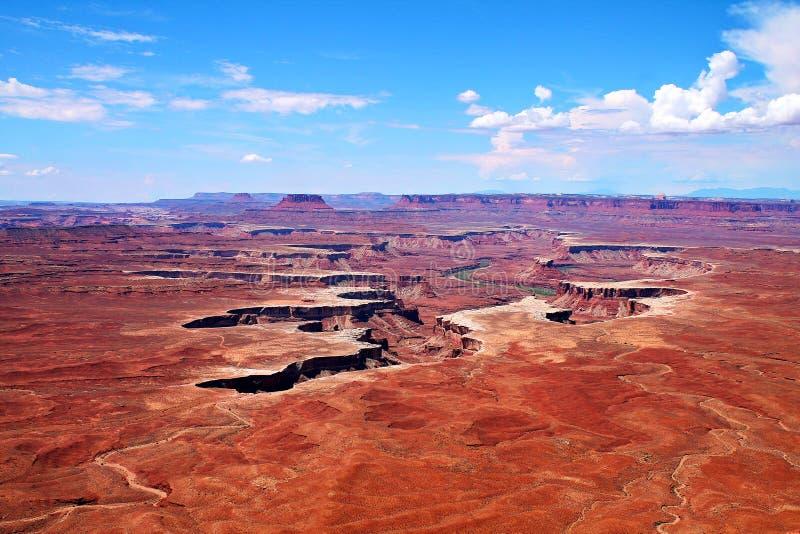 Zielony Rzeczny jaru rozcięcie w mieszkanie pustyni krajobraz w Canyonlands, Utah zdjęcie royalty free
