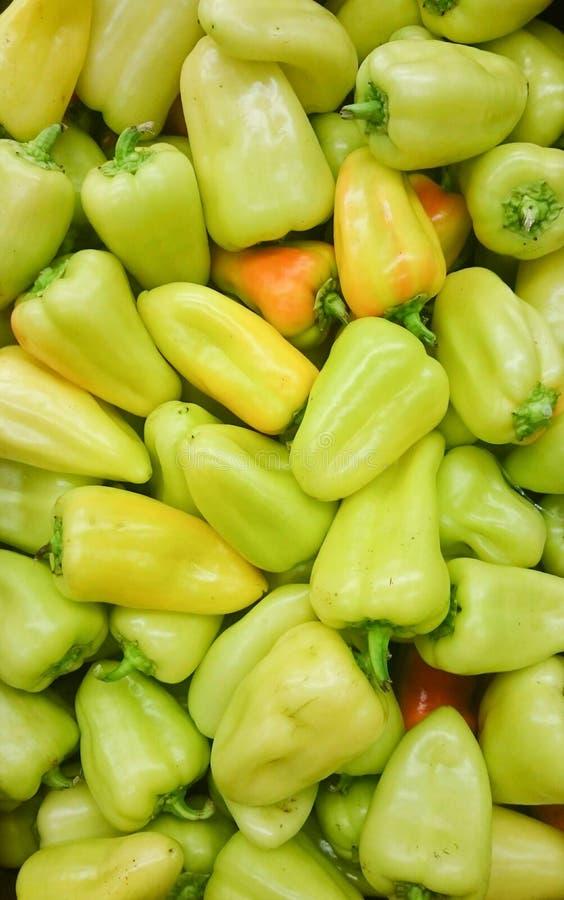 Zielony słodki mieszanka dzwonkowych pieprzy bulgarian zamknięty up pieprz świeży, asortowana kolorowa capsicum papryka obrazy royalty free