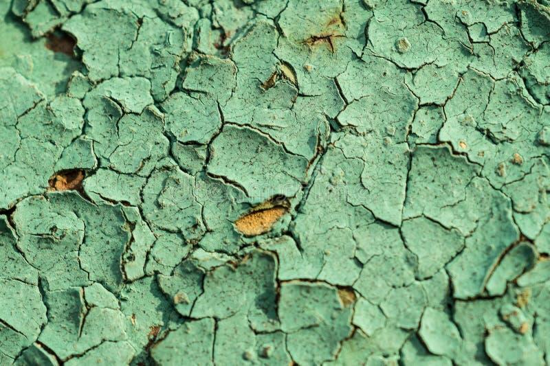 Zielony tło Tekstura stara krakingowa farba zdjęcie royalty free