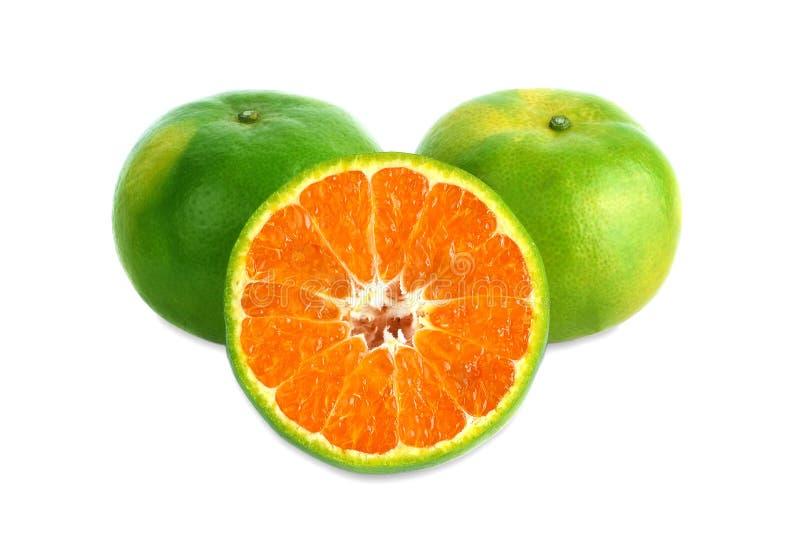 Zielony tangerine na białym tle fotografia royalty free