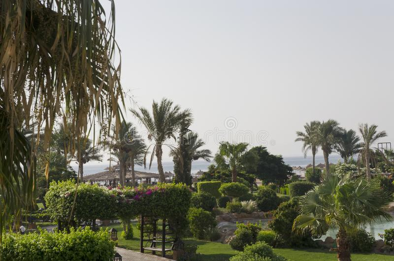 Zielony teren hotel obrazy royalty free