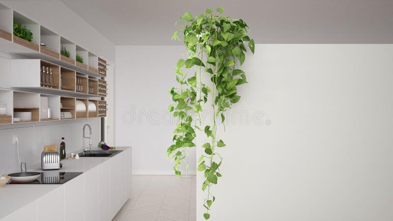 Zielony wewnętrznego projekta pojęcia tło z kopii przestrzenią, pierwszoplanowa biel ściana z doniczkową rośliną, minimalna kuchn ilustracji