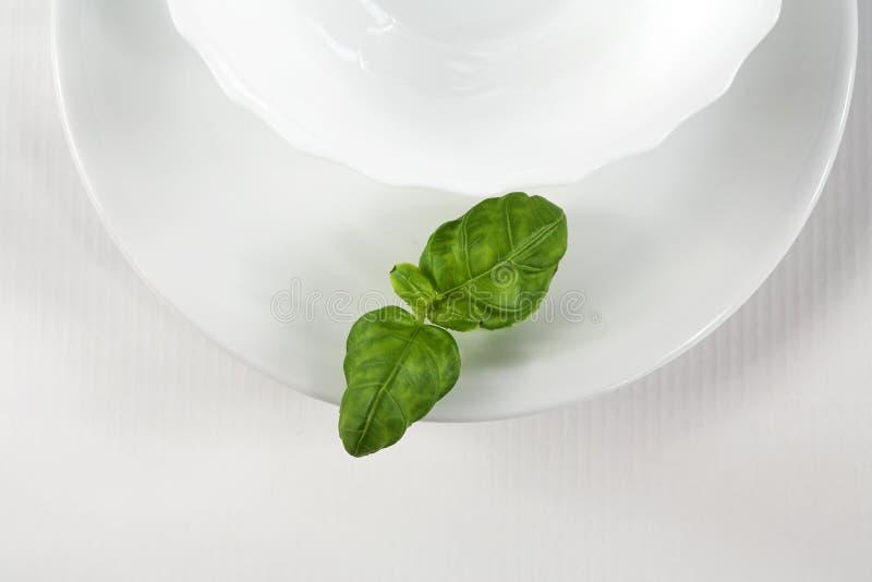 zielony white zdjęcia stock
