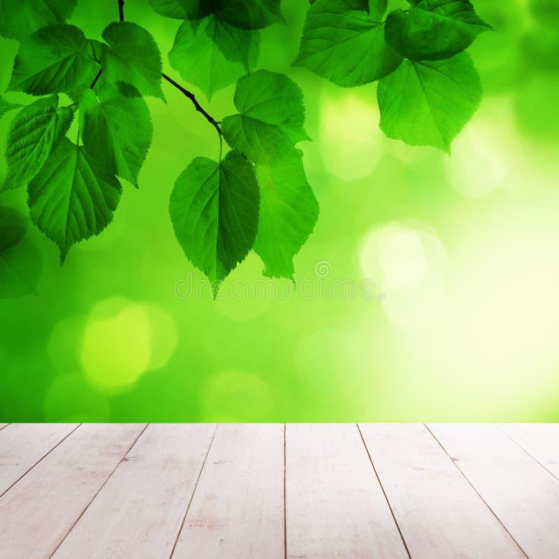 Zielony wiosny tło z Pustym Drewnianym stołem zdjęcie royalty free