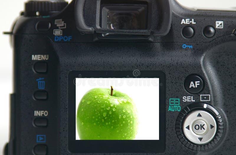 - zielony zdjęcia jabłka obraz stock