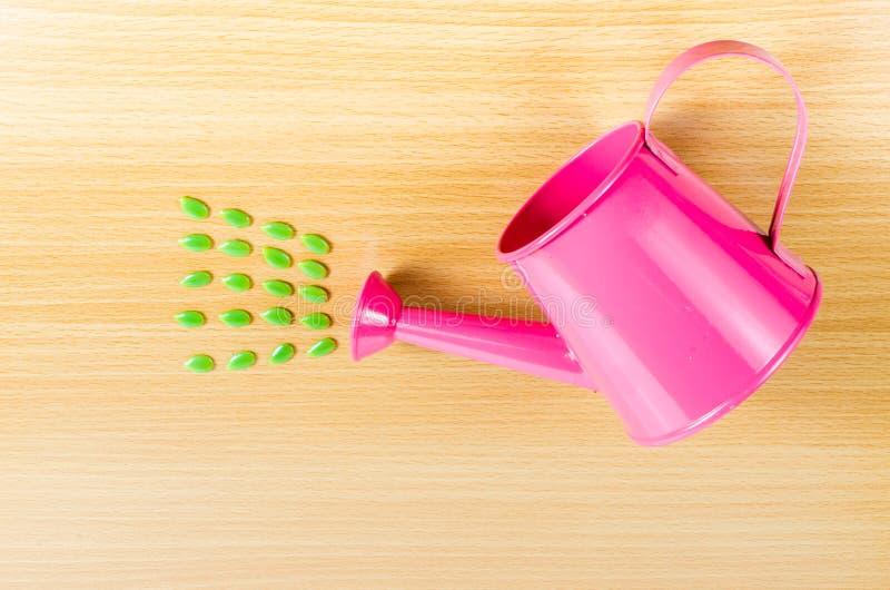 Download Zielony Ziarno Z Menchia Ogródu Podlewania Puszką Obraz Stock - Obraz złożonej z prysznic, wyposażenie: 53786487