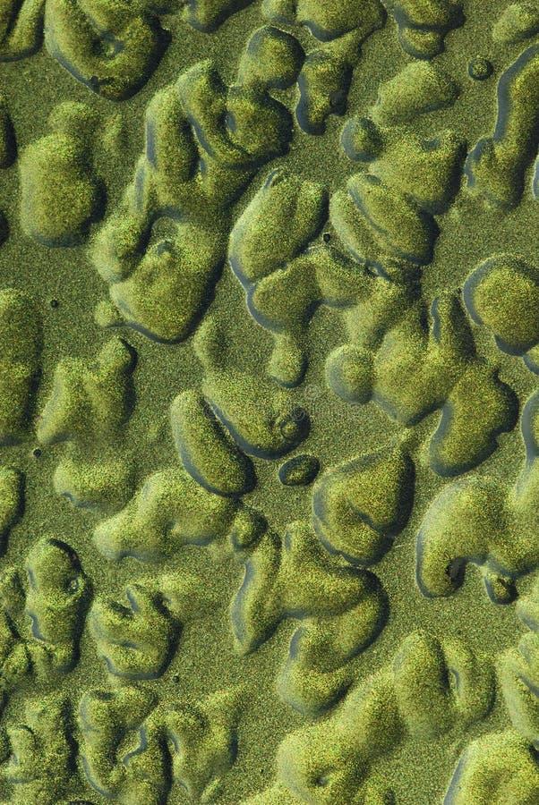Download Zielony zielona tekstura obraz stock. Obraz złożonej z rdza - 13331999