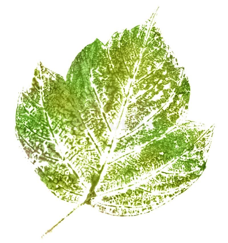 Zielony znaczek liść obraz royalty free