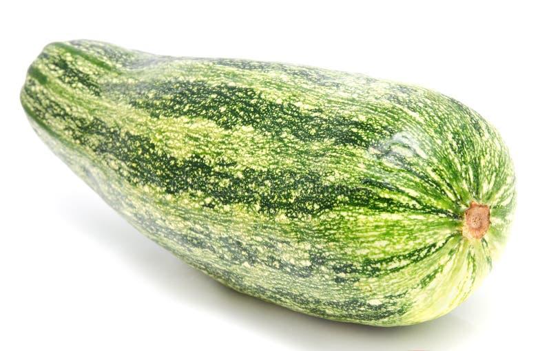 Zielony zucchini odizolowywający na biel obraz stock