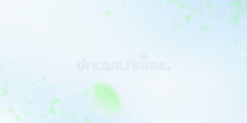 Zielonych kwiatów płatków spada puszek Wyśmienity romant ilustracji