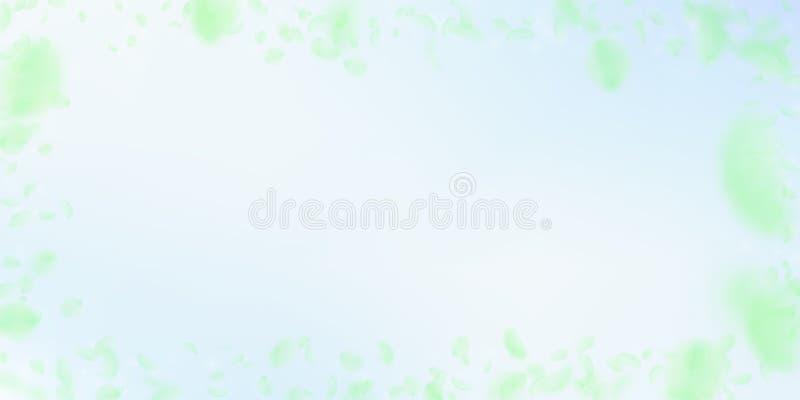 Zielonych kwiat?w p?atk?w spada puszek Warto?ciowy romanti ilustracja wektor